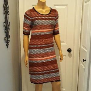 Ann Taylor size medium pullover sweater dress